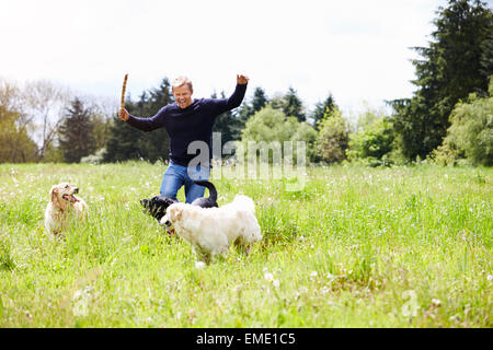 Man Exercising Dogs On Countryside Walk - Stock Photo