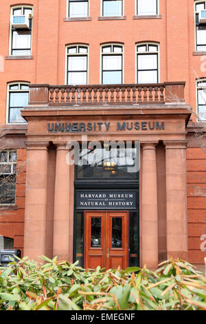 Harvard Museum of Natural History at Harvard University campus in Cambridge, Massachusetts. - Stock Photo