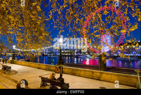 The London Eye and River Thames with Trees At Night London UK - Stock Photo