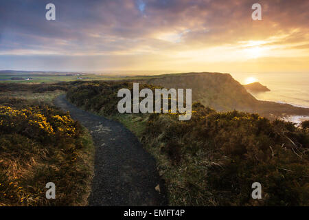 Cliff top path over the Giant's Causeway at sunset, Co. Antrim, Northern Ireland - Stock Photo