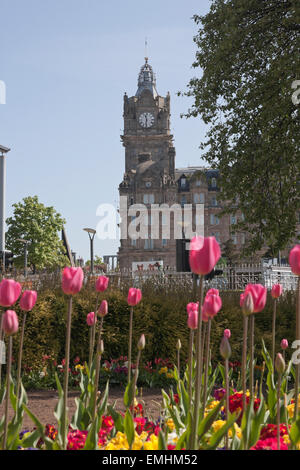 The Balmoral Clock Tower in Edinburgh with spring Tulips in the foreground - Stock Photo
