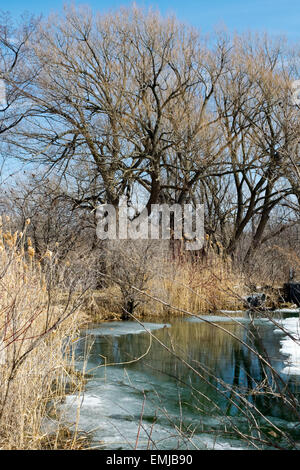 A pond beside the historical Soulange Canal. - Stock Photo