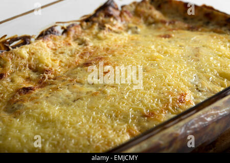 Close up of cannelloni with tomato sauce and cheese in tray - Stock Photo