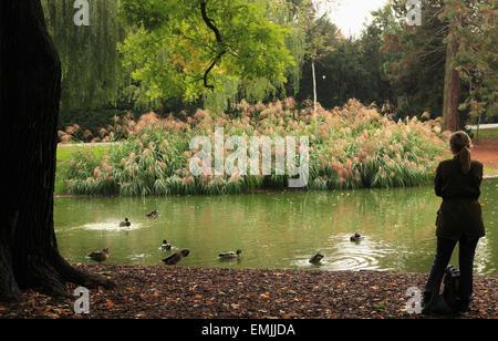 Austria, Vienna,  Stadtpark, City Park, pond, - Stock Photo