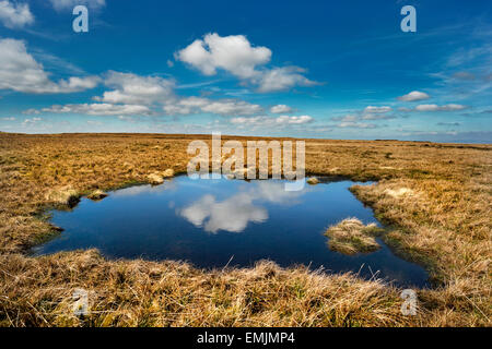 Wild Boar Fell, near Kirkby Stephen, Eden Valley, Cumbria, UK, with cloud reflection. A popular destination for - Stock Photo