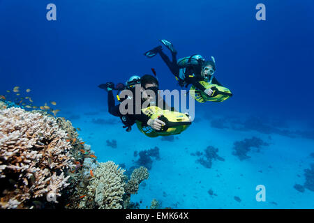 Divers with diver propulsion vehicles exploring a coral reef, Soma Bay, Hurghada, Egypt, Red Sea - Stock Photo