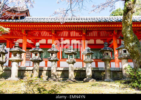 Japan, Nara, Kasuga Taisha Shrine. Row of Kasuga-doro type stone lanterns, toroby vermilion covered corridor - Stock Photo