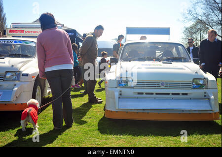 A woman with a small dog stands by a line of Austin metro 6r4 cars at a classic car show in Longbridge near Birmingham. - Stock Photo