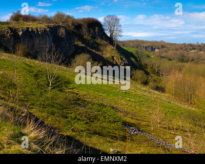 A view of the hillside around Stoney Wood near Wirksworth Derbyshire Dales Peak District England UK in Spring - Stock Photo