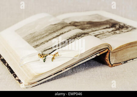 Pince-nez on the open page of the old book with illustrations - Stock Photo