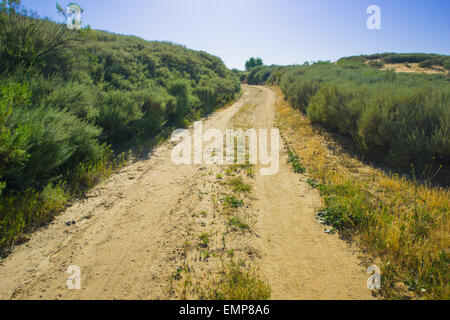 Flattened dirt track winds through shrubbery in California wilderness. - Stock Photo
