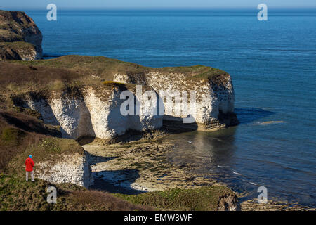 Sea cliffs at Flamborough Head on the North Yorkshire coast in northeast England. - Stock Photo