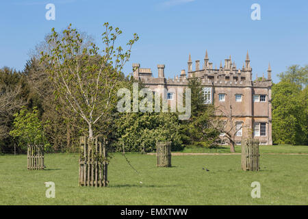 View accross parkland an young horse chestnut trees to Corsham Court, Wiltshire,UK - Stock Photo