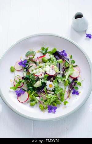 Spring salad with radish, broad beans and violets - Stock Photo