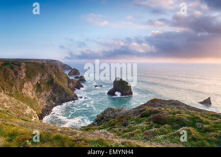 Cornish clifftops at Pentire Steps and looking out at the neighbouring sea stacks at Bedruthan - Stock Photo