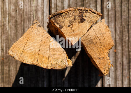 Close up of three pieces of chopped firewood. Unsharp background, detailed texture of wood. - Stock Photo