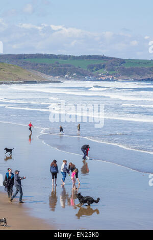 Dog walkers, walking the dog on beach at Whitby with Sandsend in distance. Whitby, North Yorkshire, England, UK - Stock Photo