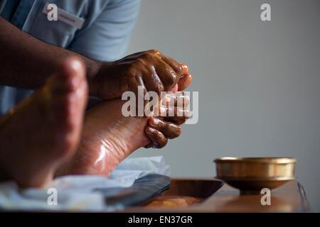 Foot massage, Abhyanga oil massage, Hotel Purity, Malabar Escapes, Kerala, South India, India - Stock Photo