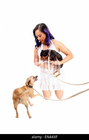 A lovely Asian woman kneeling in a dress on the floor and playing with her two little dog's, isolated on white background. - Stock Photo