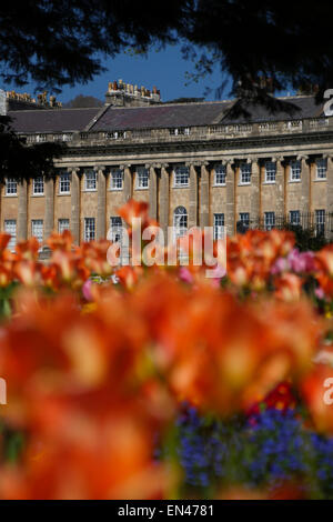 Royal Crescent, Bath, England, with spring flowers in foreground - Stock Photo