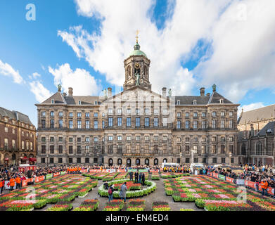 10.000 visitors will pick 200.000 tulips on Amsterdam Dam Square for free. National Tulip Day starting official - Stock Photo