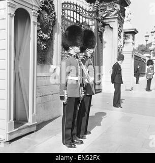 The Coldstream guards seen here mounting the guard at Buckingham Palace. 1st September 1959 - Stock Photo