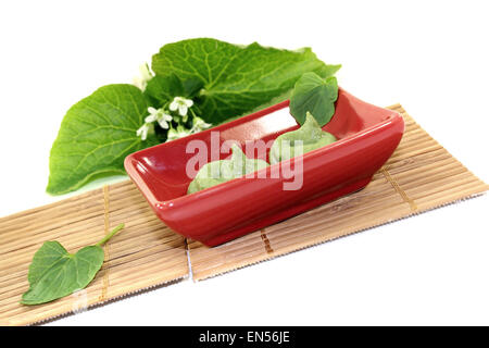 fresh Wasabi with leaf and flower in a red bowl - Stock Photo