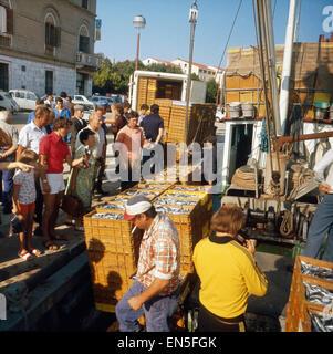 Urlaub in Istrien, Jugoslawien 1970er Jahre. Vacation in Istrien, Yugoslavia 1970s. - Stock Photo