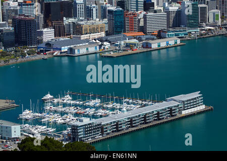 View of Wellington CBD, harbour and Chaffers Marina, from Mount Victoria Lookout, Wellington, North Island, New - Stock Photo
