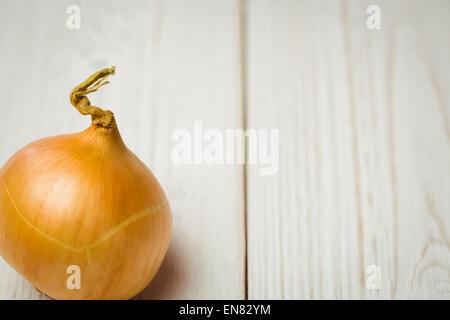 Fresh onion - Stock Photo