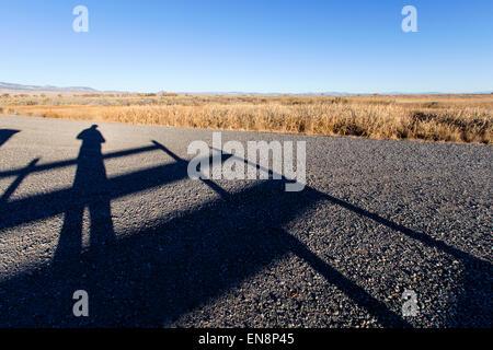 Self portrait of photographer's shadow on gravel road near Monte Vista, Colorado, USA