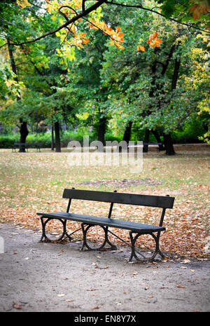 Empty bench in park in Fall - Stock Photo