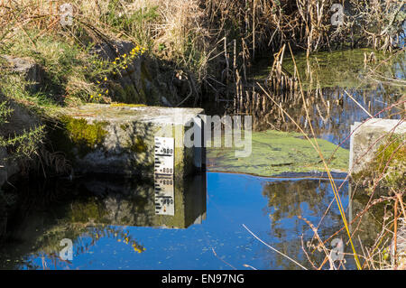 A sluice on a ditch to maintain the water level up stream and stop a wetland drying out - Stock Photo