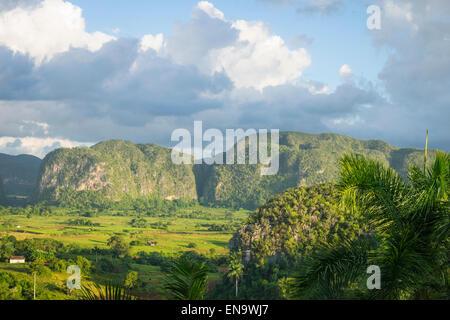 Cuba valley Valle de Vinales tobacco fields farms smallholdings mogote mogotes hills - Stock Photo