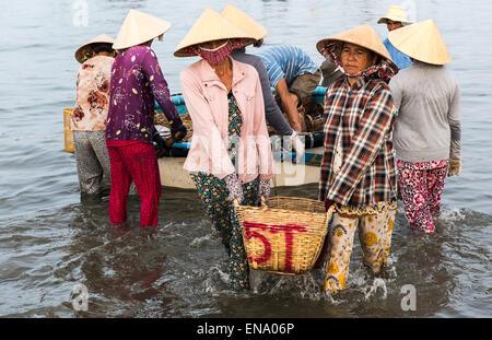 Mui Ne Fishing Village, Unloading The Fishing Catch, Early Morning. - Stock Photo