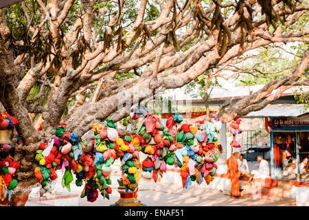Wish Tree in Durgadevi Temple, Anegundi.