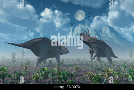 Confrontation Between Two Male Triceratops Dinosaurs - Stock Photo