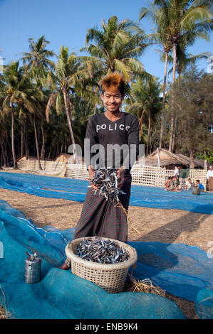 Young Burmese fisherman with funky dyed hair handful of fish on Ngapali beach with blue fishing nets and palm trees - Stock Photo