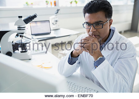 Focused scientist working at computer in laboratory - Stock Photo