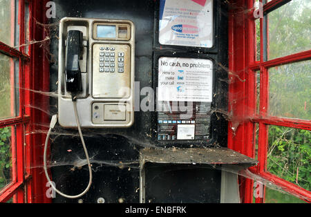 Spiders web inside a telephone box - Stock Photo
