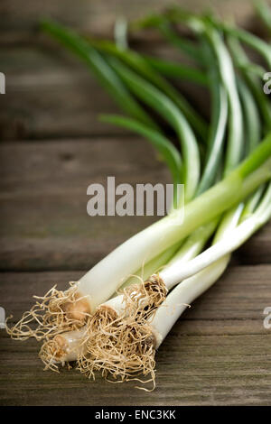 Bundle of fresh scallions on a wooden board - Stock Photo
