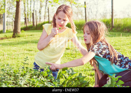 girls in herb garden - Stock Photo
