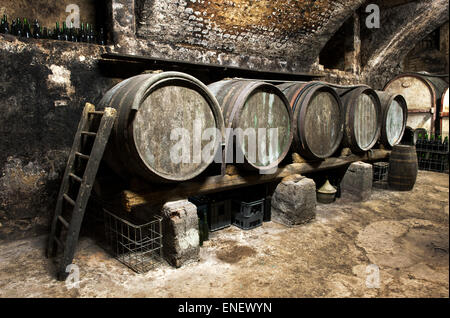 Interior of an old wine cellar at a winery with a row of wooden oak casks - Stock Photo