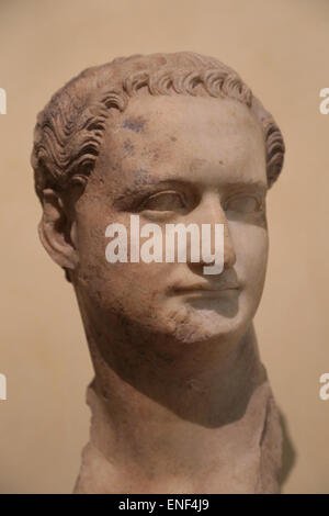 Domitian (51-96). Roman emperor. Flavian dynasty. Bust. Marble. From the Esquiline. Rome. Capitoline Museums. Rome. - Stock Photo
