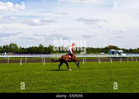 Horse racing at Kempton - Stock Photo
