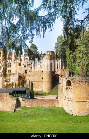 Beaufort castle ruins in the forest - Stock Photo