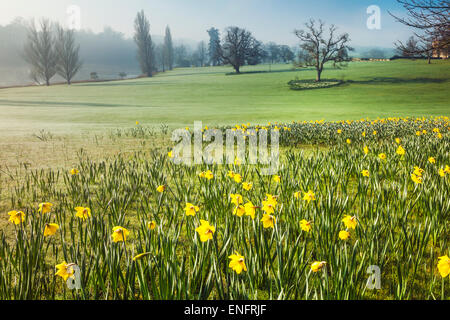 Bowood House in Wiltshire in the spring. - Stock Photo