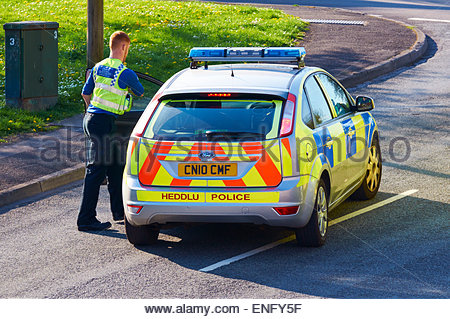a  police community support officer getting into a ford focus police car stopped in the middle of a road - Stock Photo