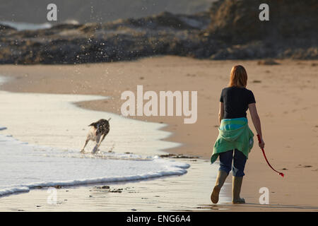 Walking the dog on the beach at Constantine Bay, near Padstow, Cornwall, Great Britain. - Stock Photo