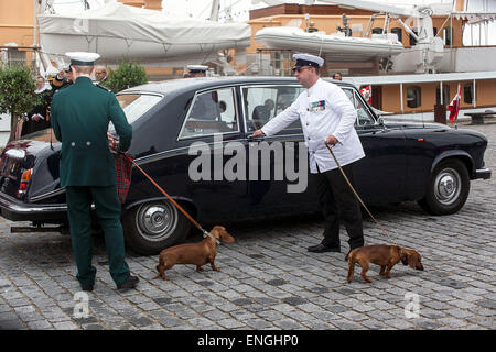 Helsingore, Denmark. 5th May, 2015. The royal Dachshund's followed Queen Margrethe and Prince Consort Henrik onboard - Stock Photo